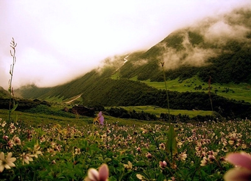 chardham-with-valley-of-flower-package