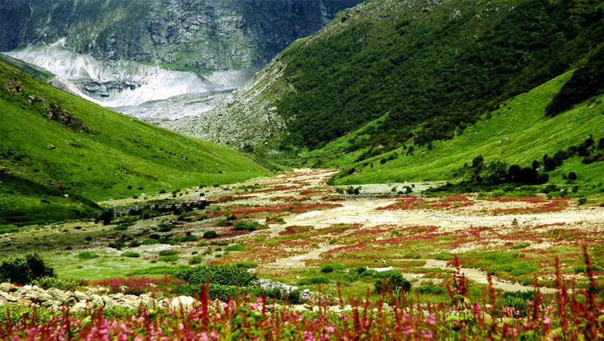 chardham yatra with valley-of-flowers